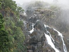 Australia-Cairns-Kuranda%20National%20Park.jpg